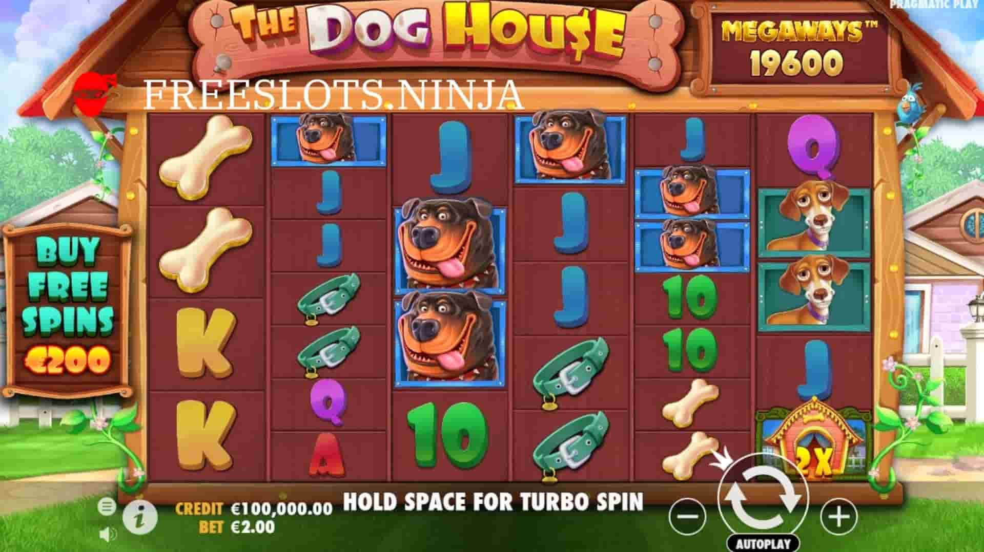 the dog house megaways game play